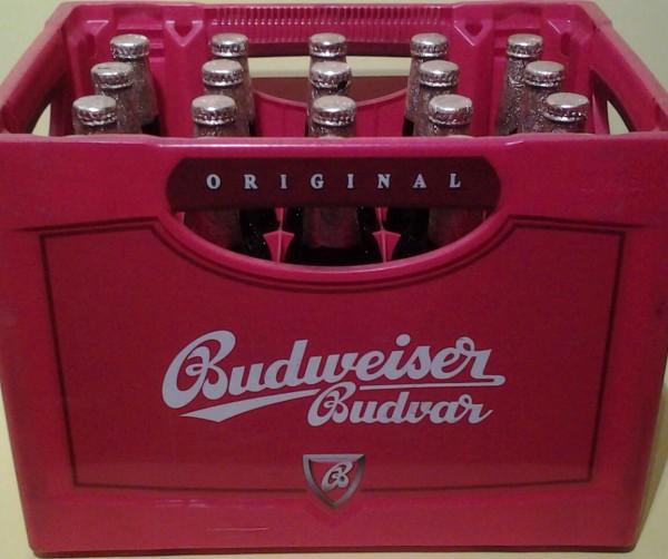Budweiser Budvar 20x0,5l